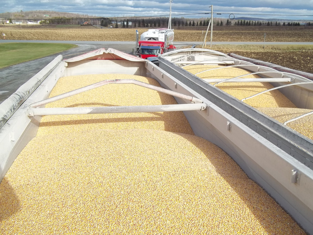 Purchase and Sale of Round Grains and Grain Products | Jean